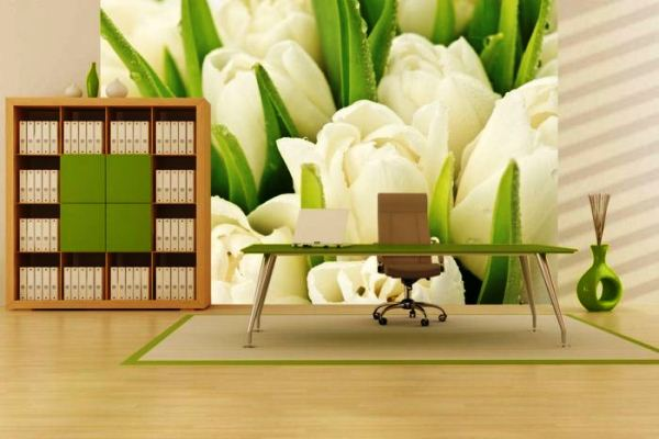 фотообои белые тюльпаны 3