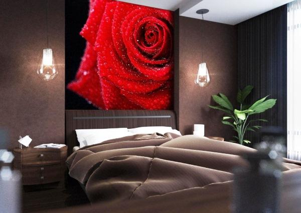 фотообои красная роза в интерьере фото