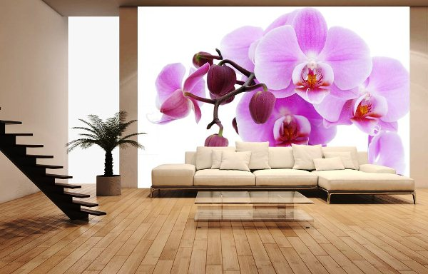 Обои орхидеи в интерьере