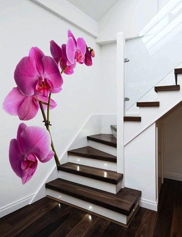 фотообои на стену орхидеи
