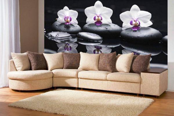 фотообои орхидеи на камнях
