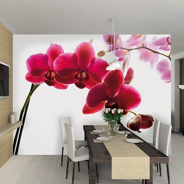 фотообои орхидея фото 5