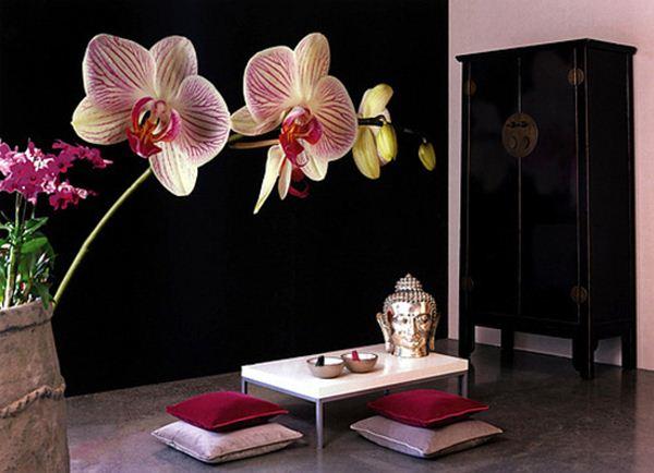 фотообои орхидея фото 7