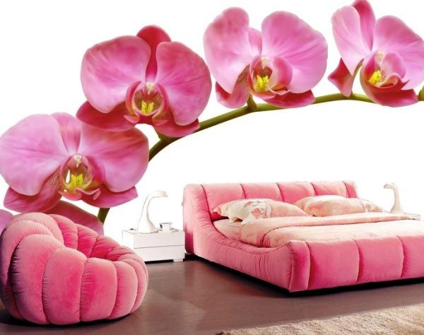фотообои цветы фото