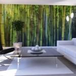 фотообои бамбук