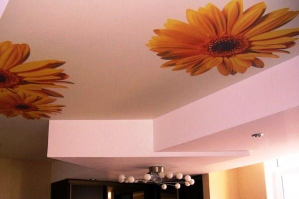фотообои для потолка фото 4