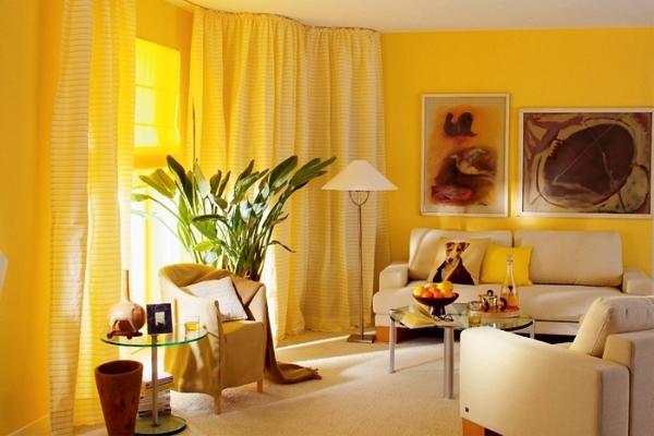 шторы к желтым обоям фото