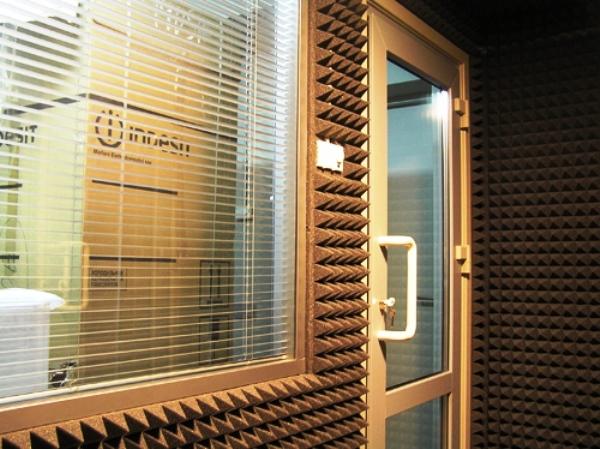 акустический поролон для защиты от шума